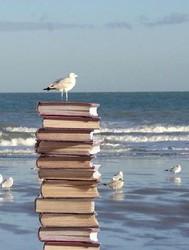 Livres plage